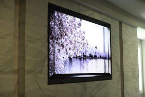 OLED, Custom, Media Room